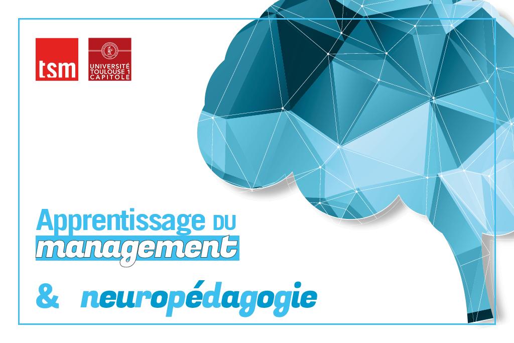 Apprentissage du management et neuropédagogie à TSM