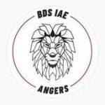 Logo BDS IAE Angers